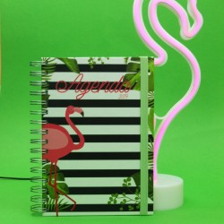 Agenda 2019 Semanal Flamingo Kit oferta
