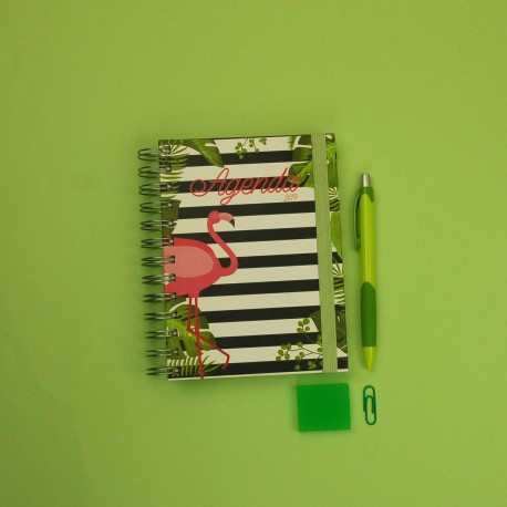 Agenda Pequena Flamingo Kit Oferta